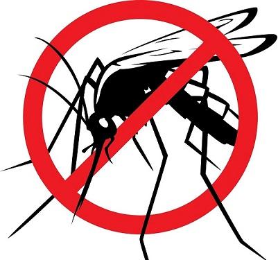 5 lý do hàng đầu để lắp đặt cửa lưới chống muỗi dạng xếp