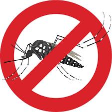 Chủ động phòng tránh bệnh dịch sốt xuất huyết