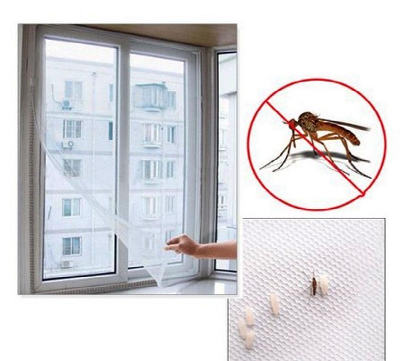 Cửa lưới chống muỗi sự lựa chọn vì sức khỏe