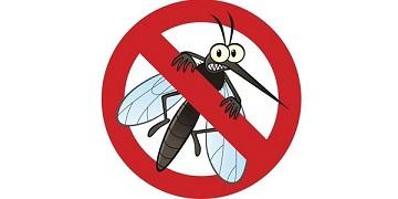 Những nguy hiểm từ bệnh sốt xuất huyết