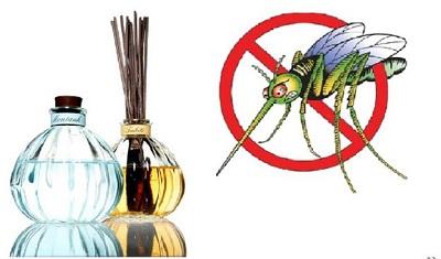 Những quan niệm sai lầm về phòng tránh muỗi