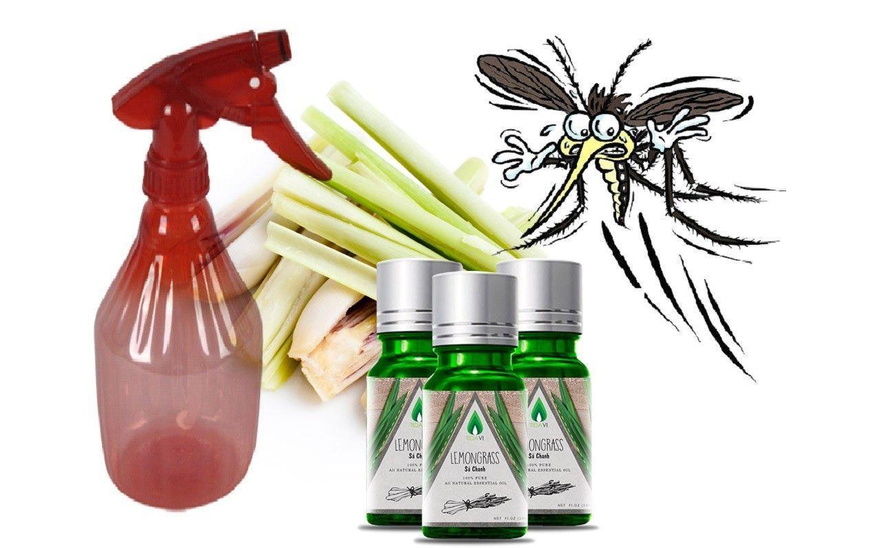 Phương pháp chống muỗi an toàn hiệu quả thân thiện với môi trường
