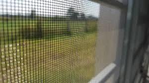 Sử dụng cửa lưới chống muỗi mở để cho không gian sống trở nên trong lành