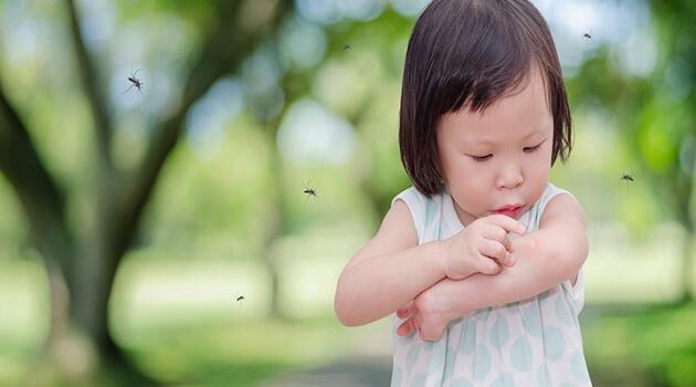 Vì sao nên lắp đặt cửa lưới chống muỗi cho trẻ nhỏ?